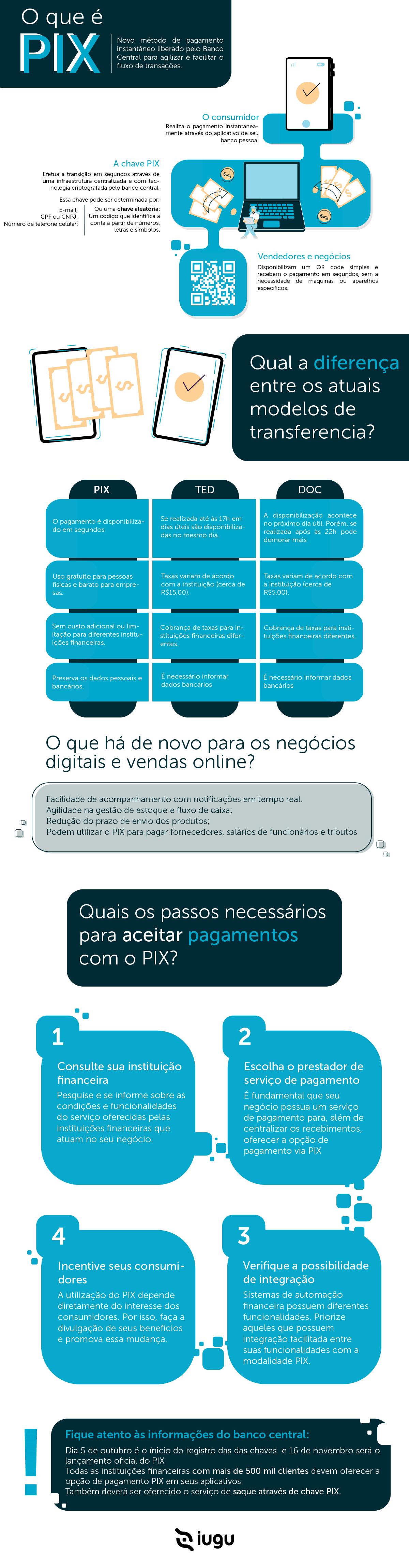 infográfico que explica tudo sobre o funcionamento do pagamento instantâneo PIX