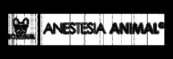 logo_borelbull__600x205 (1)